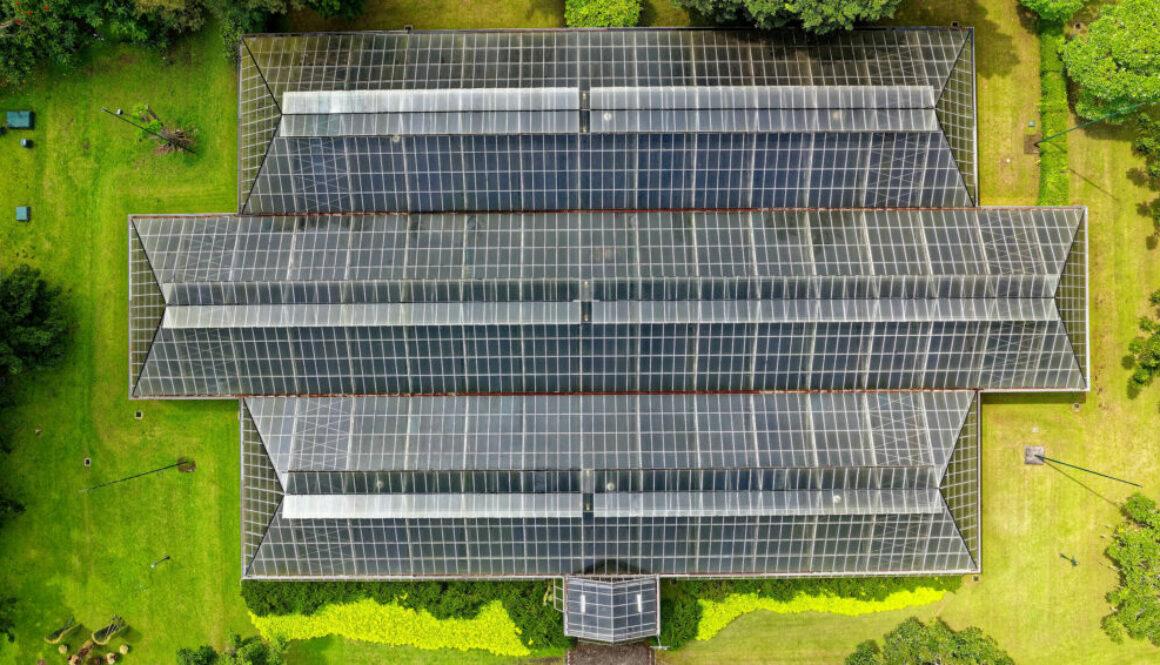 barncancerfonden och trine solar